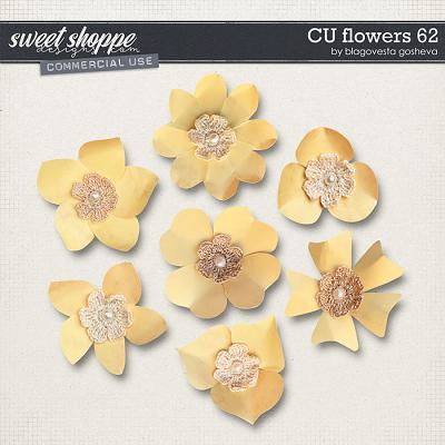 CU Flowers 62 by Blagovesta Gosheva