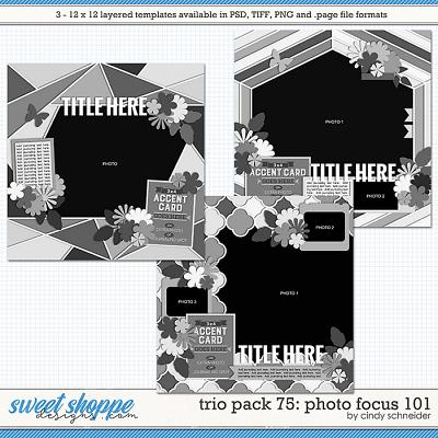 Cindy's Layered Templates - Trio Pack 75: Photo Focus 101 by Cindy Schneider