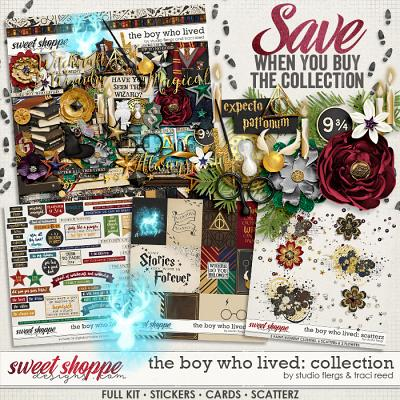 The Boy Who Lived: COLLECTION by Studio Flergs & Traci Reed