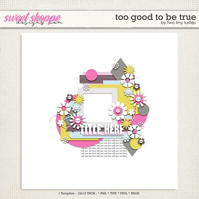 Too Good To Be True by Two Tiny Turtles