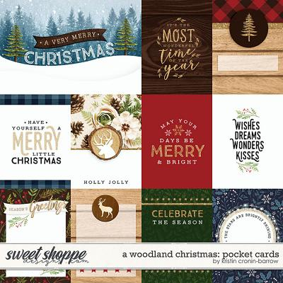 A Woodland Christmas: Pocket Cards by Kristin Cronin-Barrow