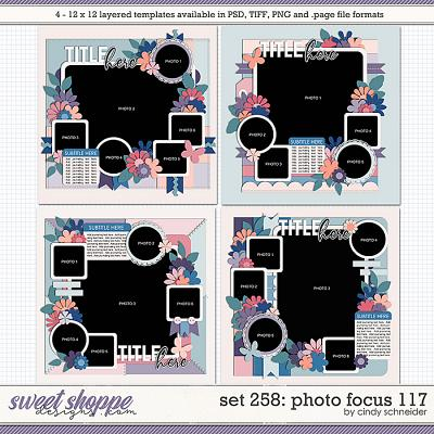 Cindy's Layered Templates - Set 258: Photo Focus 117 by Cindy Schneider