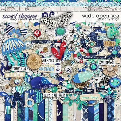 Wide Open Sea by Red Ivy Design