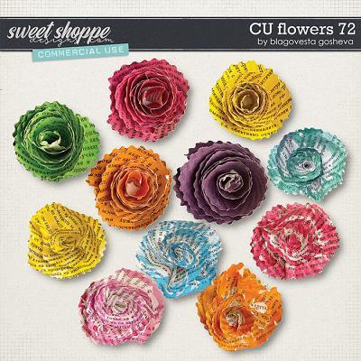 CU Flowers 72 by Blagovesta Gosheva