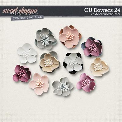 CU Flowers 24 by Blagovesta Gosheva