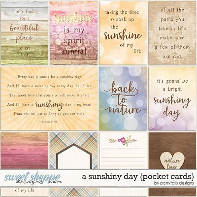A Sunshiny Day Pocket Cards by Ponytails