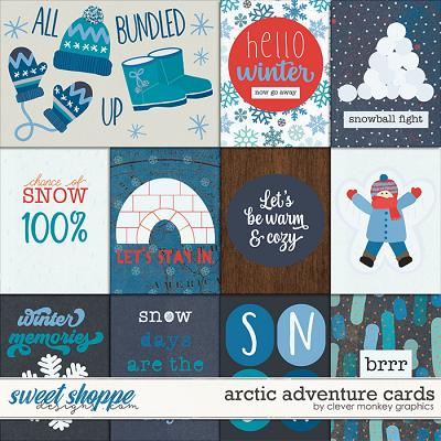 Arctic Adventure Cards by Clever Monkey Graphics