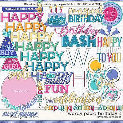 Cindy's Wordy Pack: Birthday 2 by Cindy Schneider