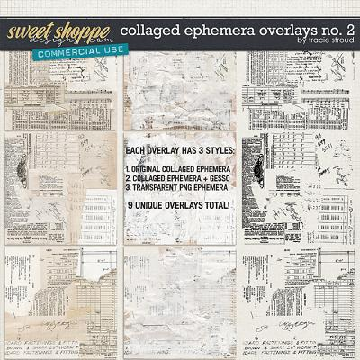 CU Collaged Ephemera Overlays no. 2 by Tracie Stroud