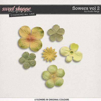 Flowers VOL 2 by Studio Flergs