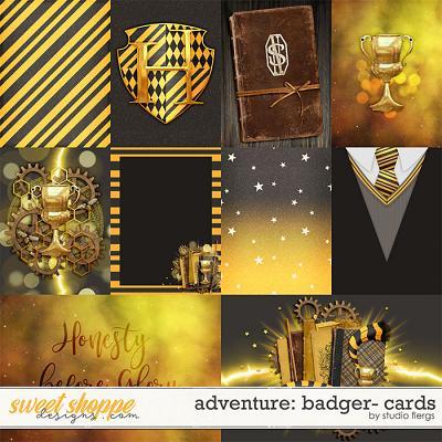 Adventure: Badger- CARDS by Studio Flergs