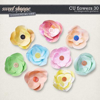 CU Flowers 30 by Blagovesta Gosheva