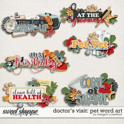 Doctor's Visit: Pet Word Art by Meagan's Creations