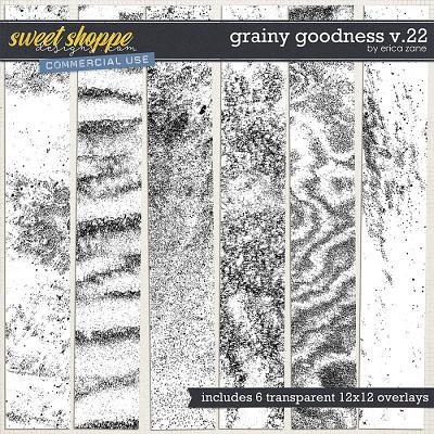 Grainy Goodness v.22 by Erica Zane