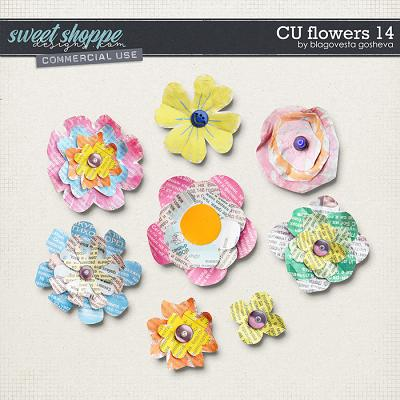 CU Flowers 14 by Blagovesta Gosheva