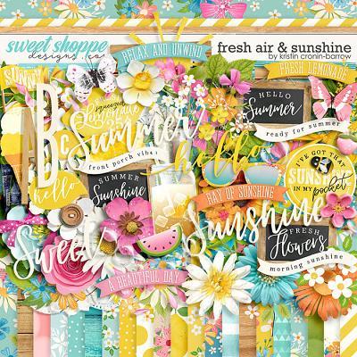 Fresh Air and Sunshine  by Kristin Cronin-Barrow