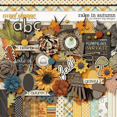 Rake In Autumn by Dream Big Designs