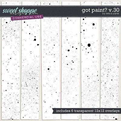 Got Paint? v.30 by Erica Zane