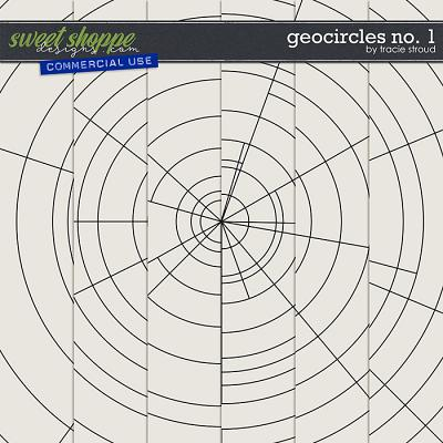 CU Geocircles no. 1 by Tracie Stroud