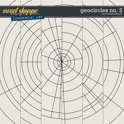 CU Geocircles no. 2 by Tracie Stroud