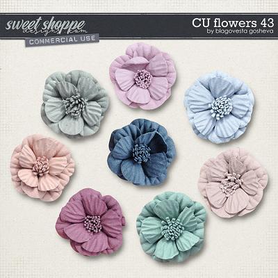 CU Flowers 43 by Blagovesta Gosheva