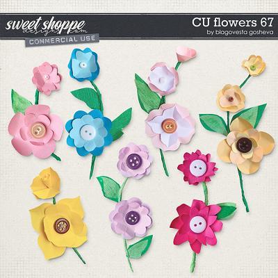 CU Flowers 67 by Blagovesta Gosheva