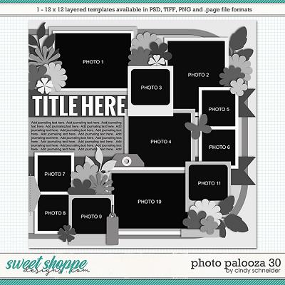 Cindy's Layered Templates - Photo Palooza 30 by Cindy Schneider