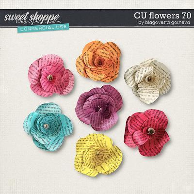 CU Flowers 70 by Blagovesta Gosheva