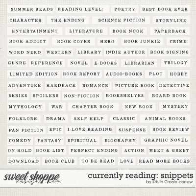 Currently Reading: Snippets by Kristin Cronin-Barrow