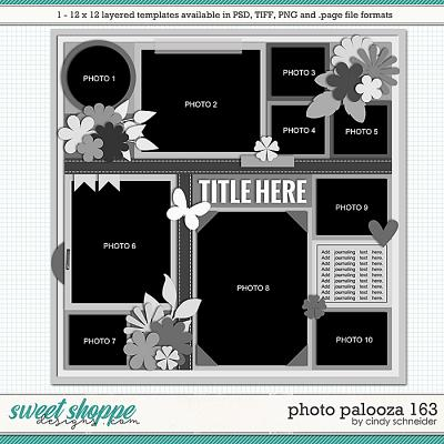 Cindy's Layered Templates - Photo Palooza 163 by Cindy Schneider