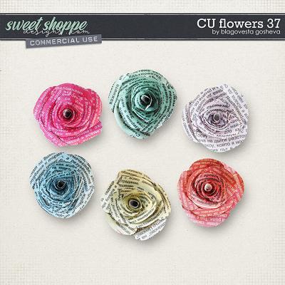 CU Flowers 37 by Blagovesta Gosheva