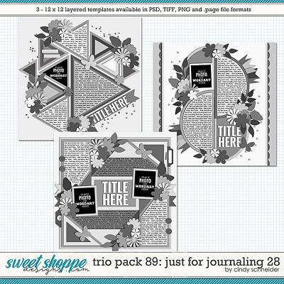 Cindy's Layered Templates - Trio Pack 89: Just for Journaling 28 by Cindy Schneider