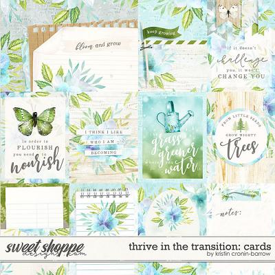 Thrive in the Transition: Cards by Kristin Cronin-Barrow