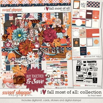 I Love Fall Most of All Collection by Traci Reed
