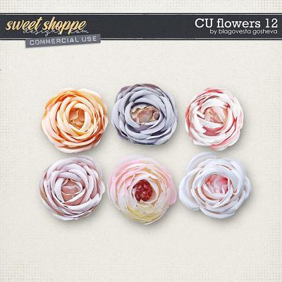 CU Flowers 12 by Blagovesta Gosheva