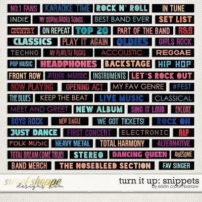 Turn it Up: Snippets by Kristin Cronin-Barrow