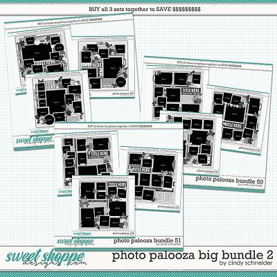 Cindy's Layered Templates - Photo Palooza Big Bundle 2 by Cindy Schneider