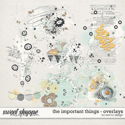 The Important Things - Overlays