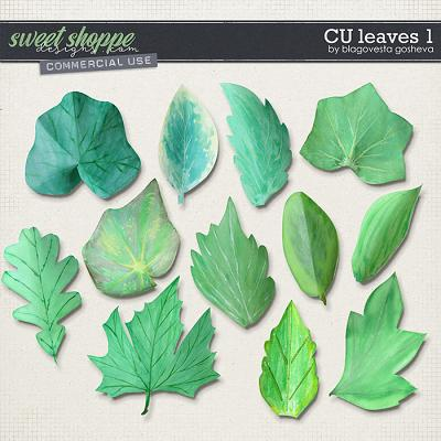 CU Leaves 1 by Blagovesta Gosheva