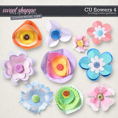 CU Flowers 4 by Blagovesta Gosheva