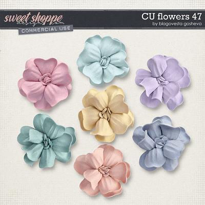 CU Flowers 47 by Blagovesta Gosheva