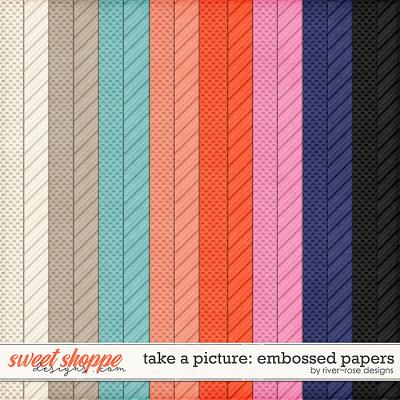 Take a Picture Embossed Papers by River Rose Designs
