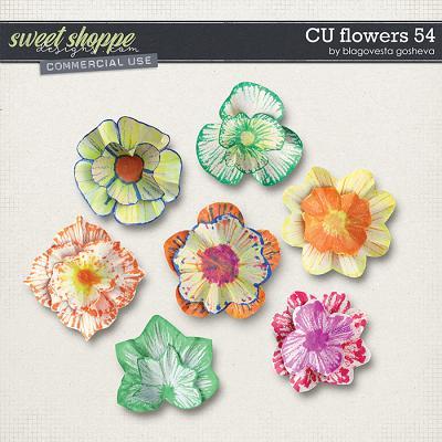 CU Flowers 54 by Blagovesta Gosheva