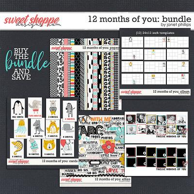 12 MONTHS OF YOU: THE BUNDLE by Janet Phillips