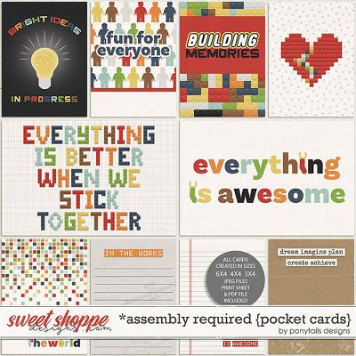 Assembly Required Pocket Cards by Ponytails
