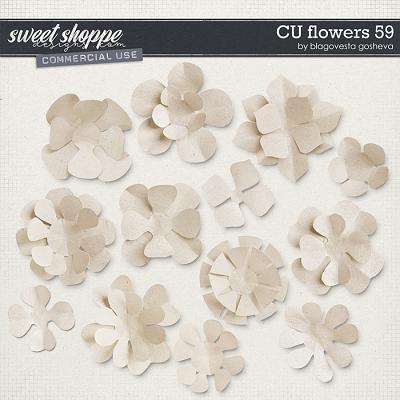 CU Flowers 59 by Blagovesta Gosheva