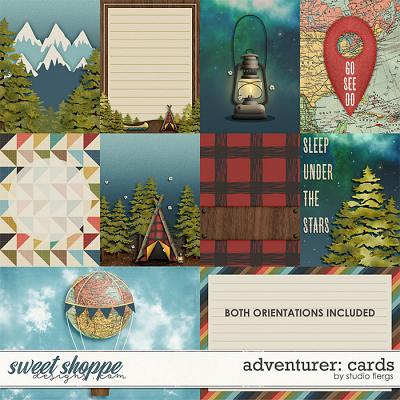 Adventurer: CARDS by Studio Flergs