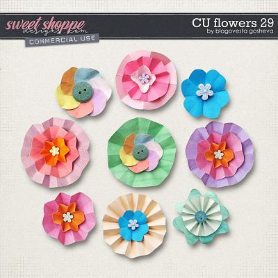 CU Flowers 29 by Blagovesta Gosheva