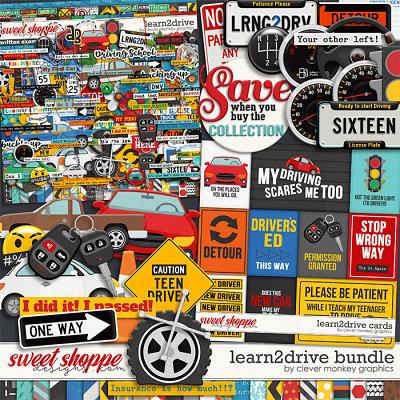 Learn2Drive Bundle by Clever Monkey Graphics