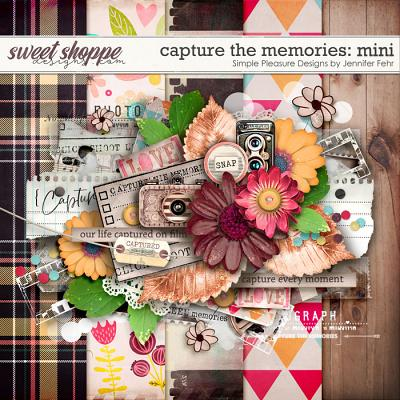 capture the memories mini: simple pleasure designs by jennifer fehr